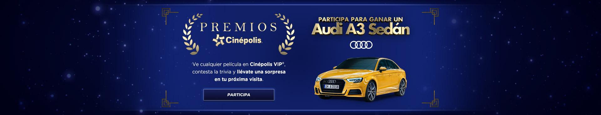 Trivia Audi VIP