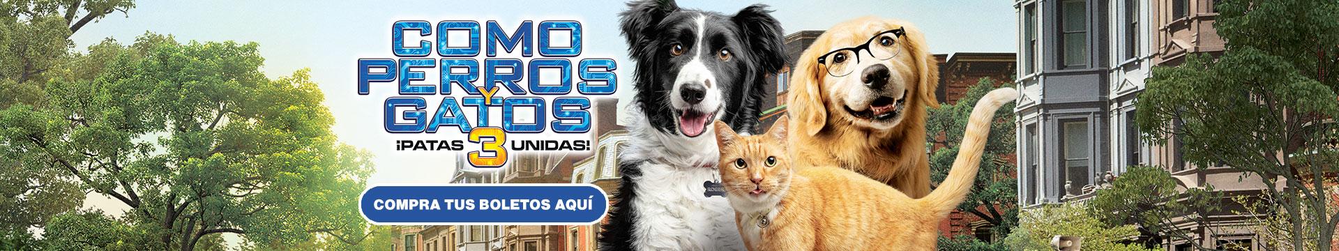 Estreno: Cómo Perros y Gatos 3