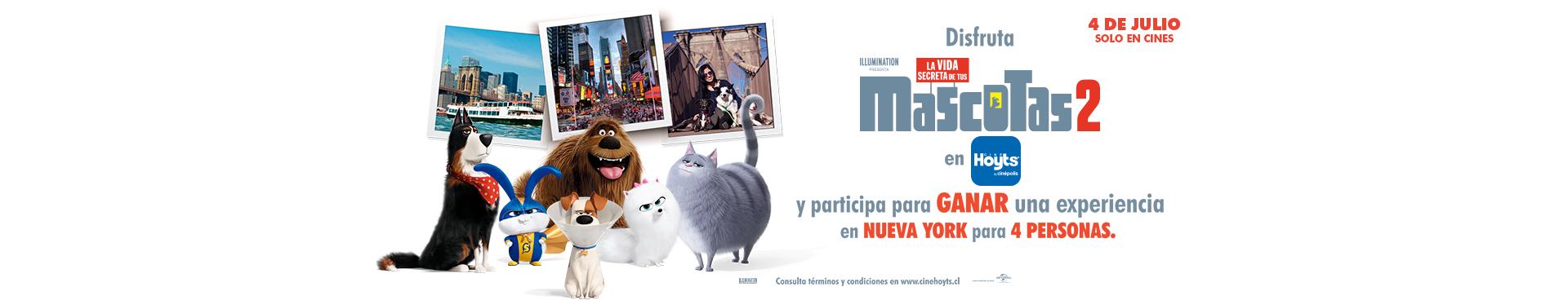 """LA VIDA SECRETA DE TUS MASCOTAS 2"""", COMPRA AQUÍ TUS ENTRADAS"""