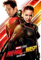 Poster de:1 El hombre hormiga y la avispa