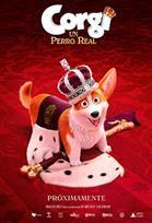 Corgi: Un perro real | Cinépolis ENTRA