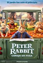 Petter Rabbit Conejo en fuga