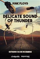 The Delicate Sound of Thunder