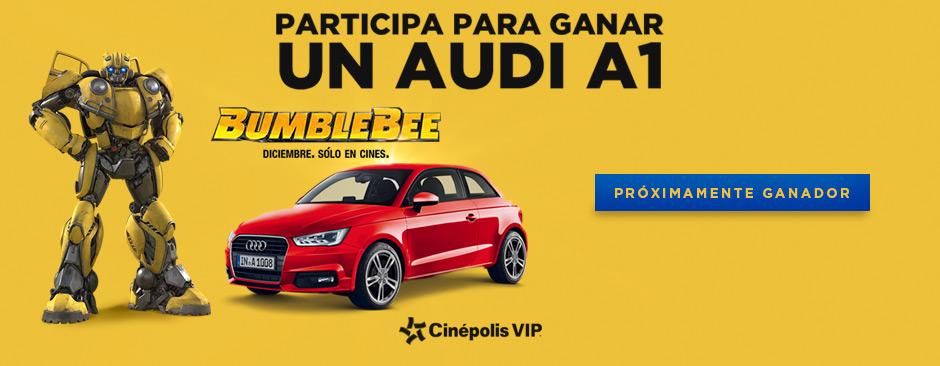 Combo Audi