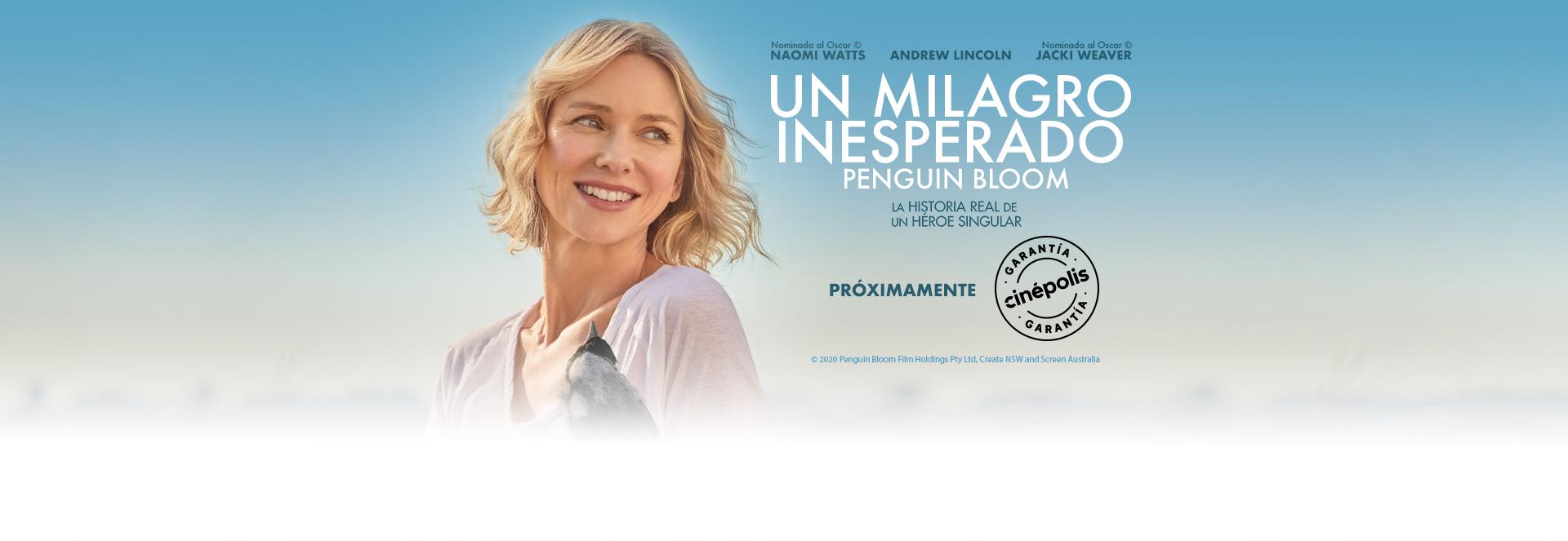 Banner Un Milagro Inesperado | Garantía Cinépolis